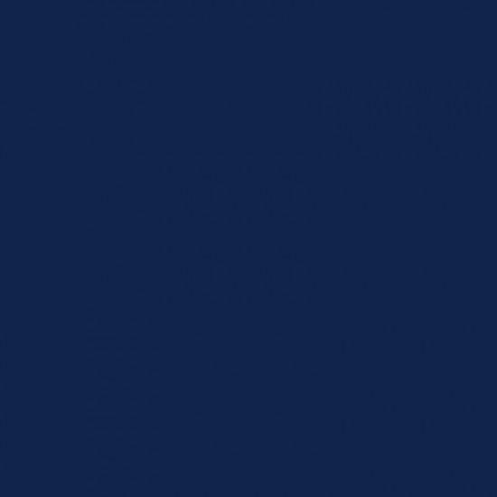 TOLDI Overlock-Nähgarn 6950 marine