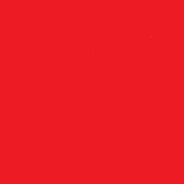Stretchsamt ELKE rot - nur für Farbe