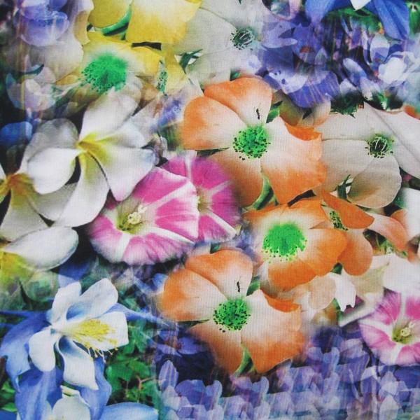 Jersey große Blumen multicolor
