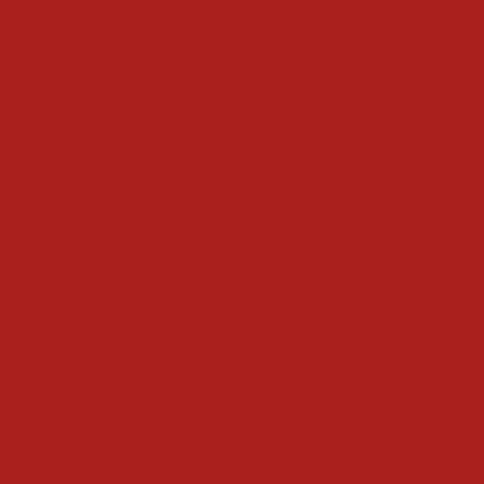 TOLDI Overlock-Nähgarn 4580 rot